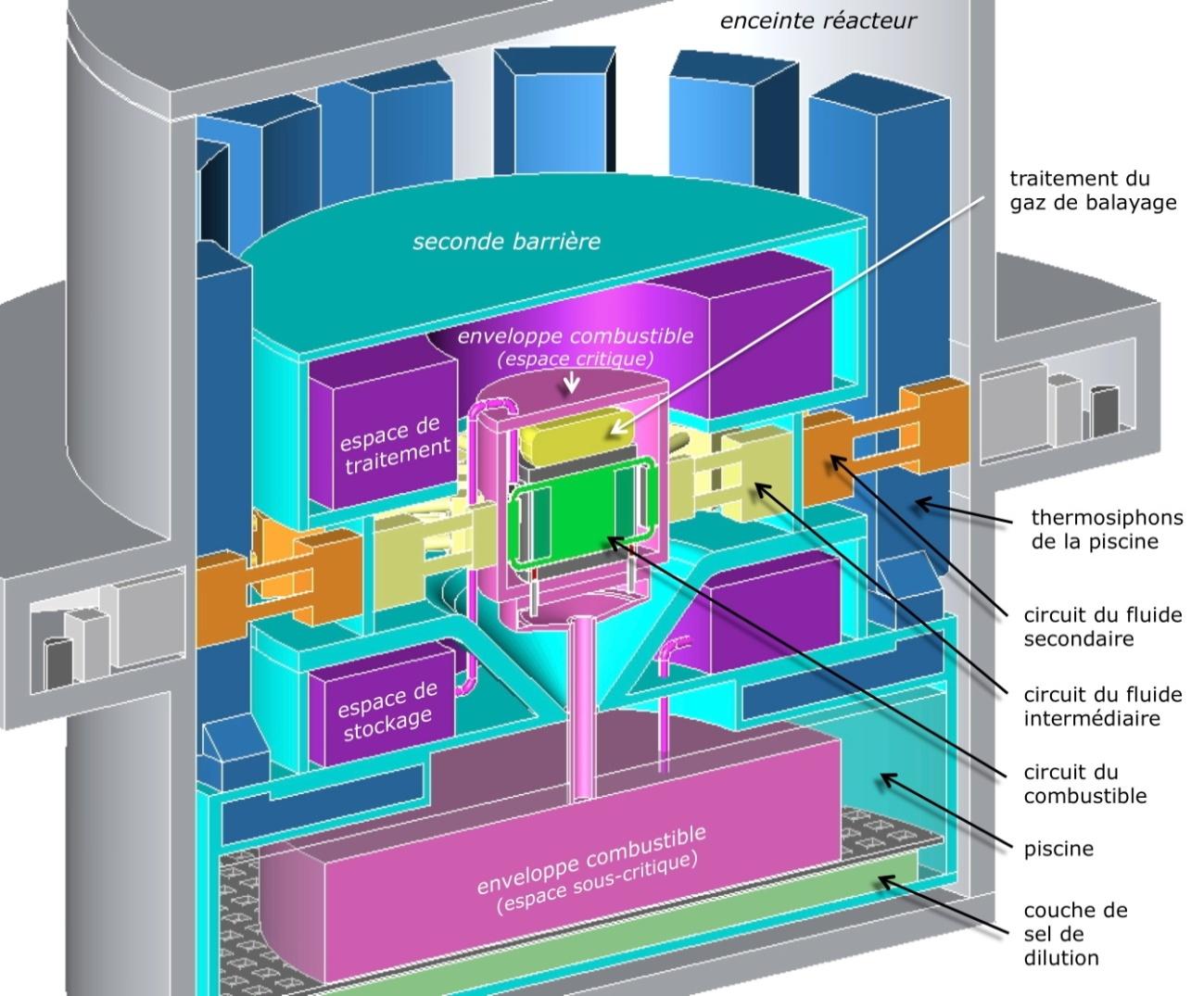 Schéma conceptuel MSFR