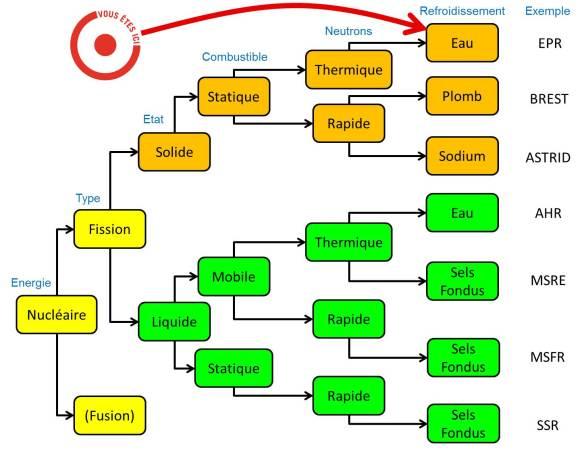 Branches technologiques